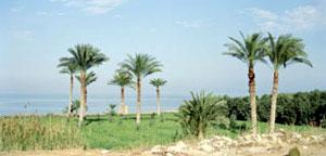 Oasi di Al-Fayoum